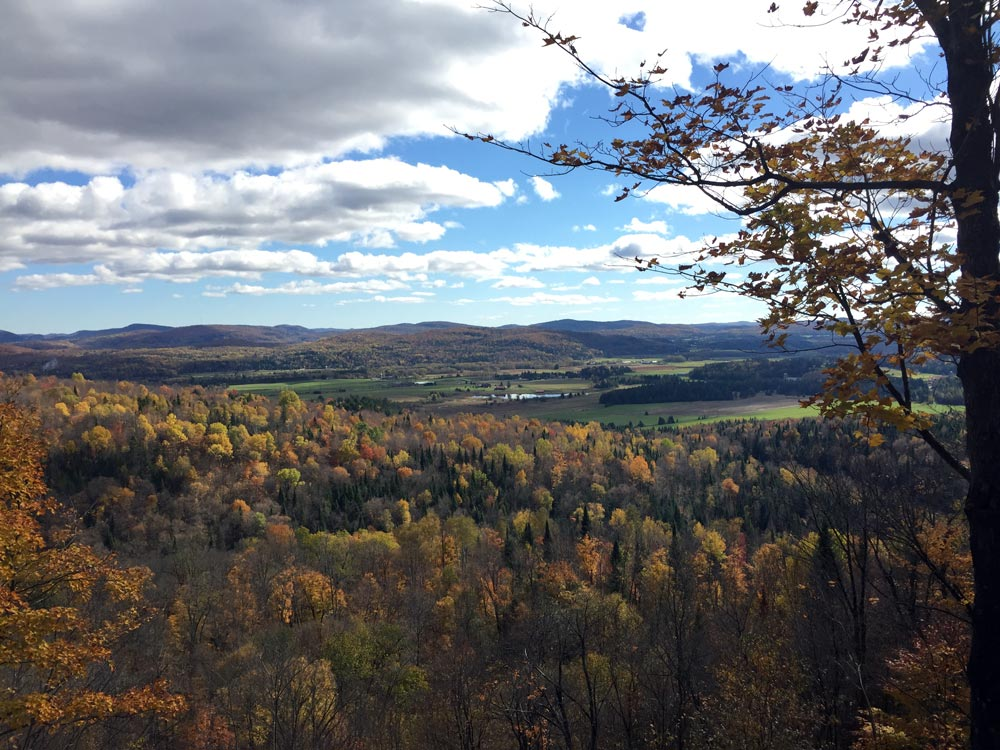 Laurentides view